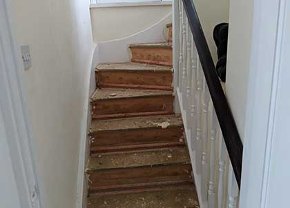 Removing the carpet exposed the original stairs